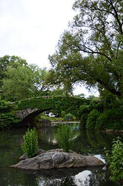 Central park pond nyc