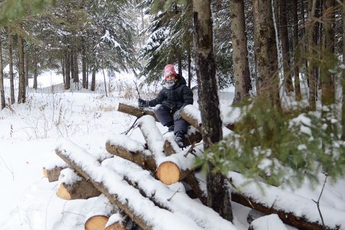Jacob on logs snow